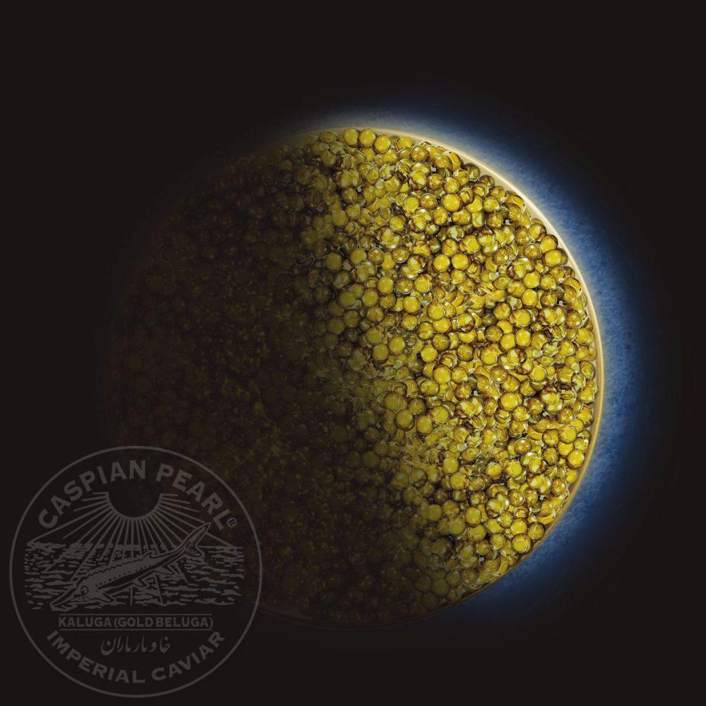 Caspian Pearl. Posts en Instagram para La Marca del Caviar.